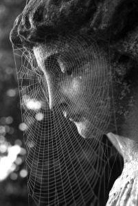 statue spiderweb